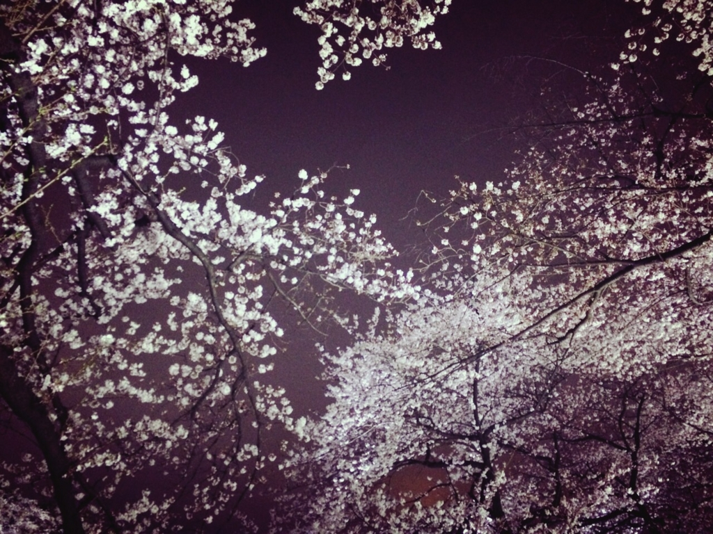f:id:totemonemuiyo:20170322094020j:plain