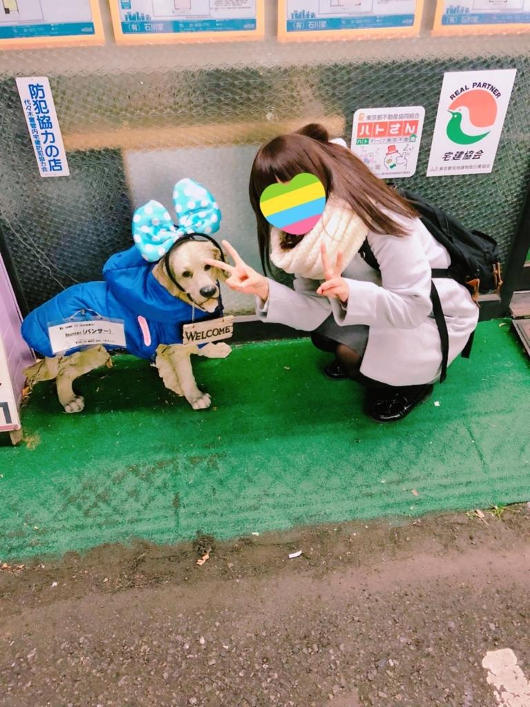 f:id:totemonemuiyo:20180106153139j:plain