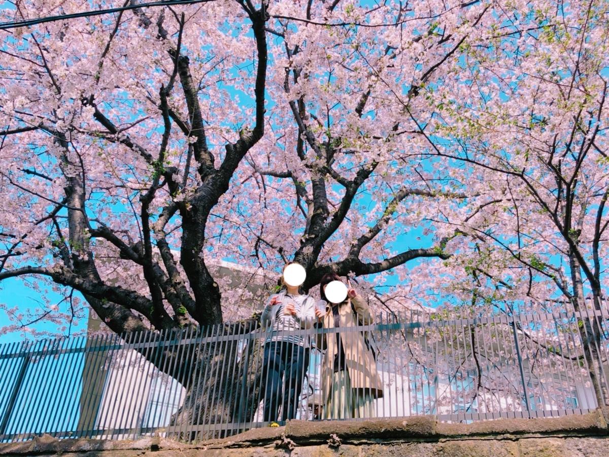 f:id:totemonemuiyo:20190417202745j:plain
