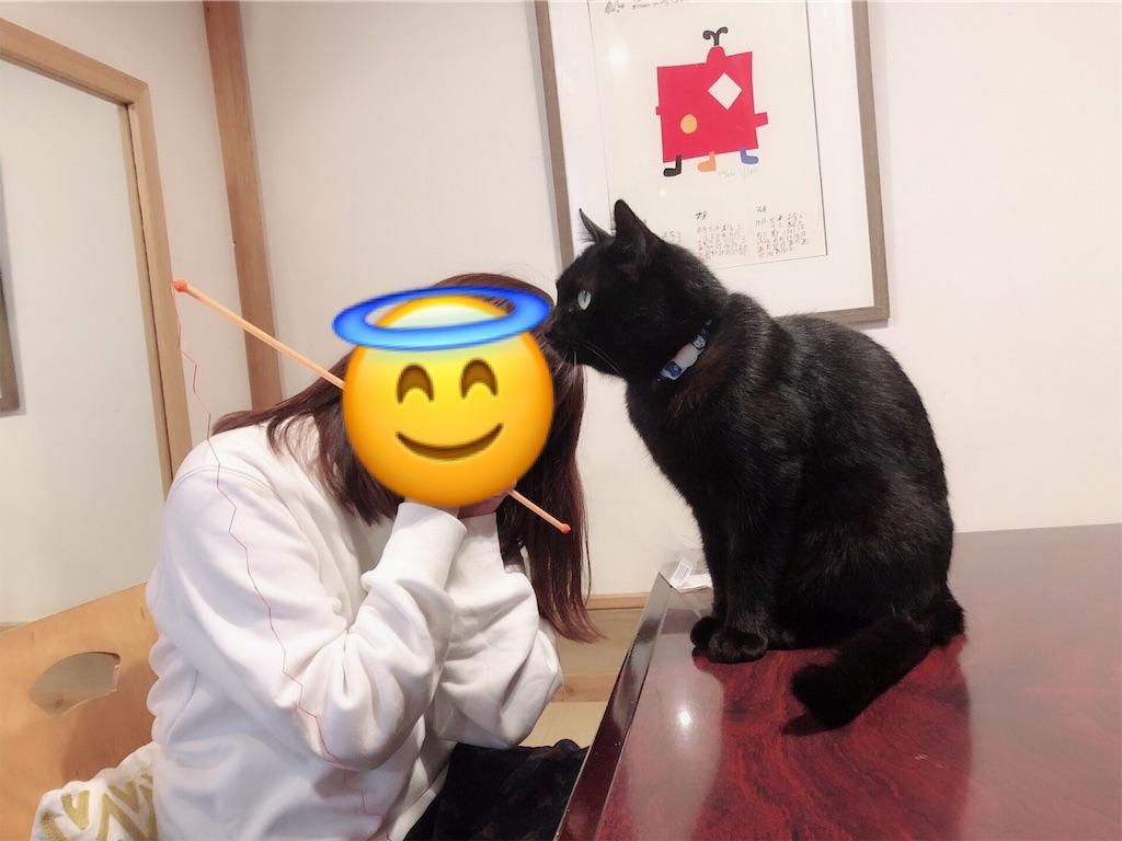 f:id:totemonemuiyo:20200307020217j:image