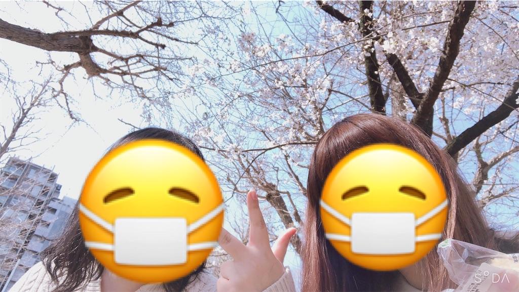 f:id:totemonemuiyo:20200330004325j:image