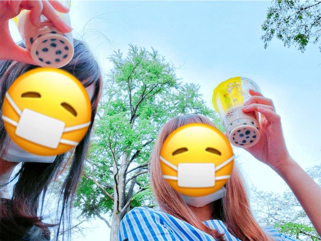 f:id:totemonemuiyo:20200604211859j:image