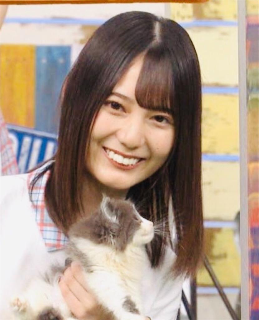 f:id:totemonemuiyo:20200918220113j:image