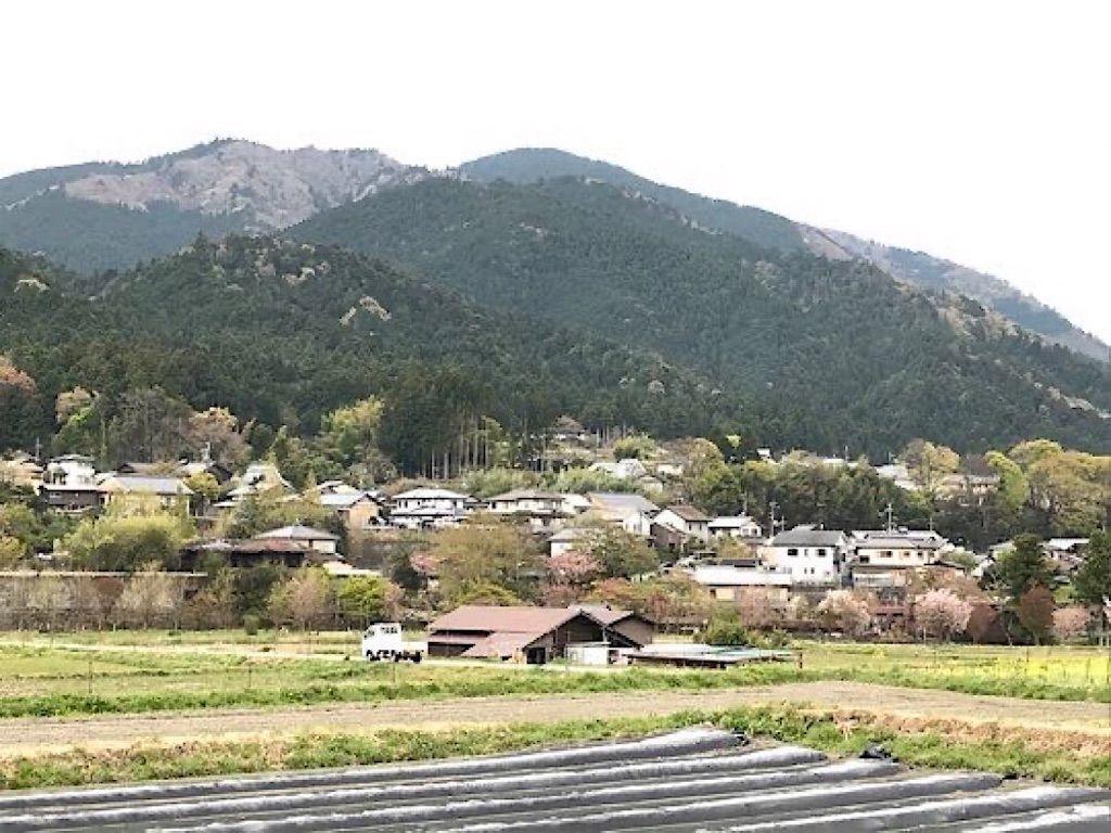 京都大原里山の風景