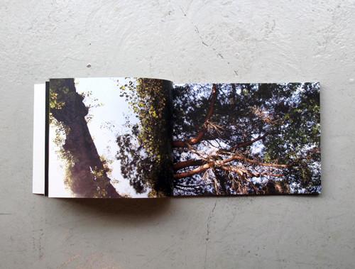 f:id:totodo_books:20120409173128j:image