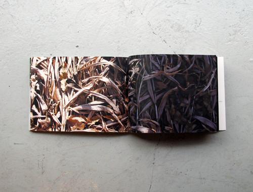 f:id:totodo_books:20120409173145j:image