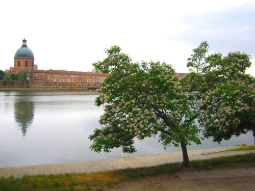 f:id:totoko-memo:20120618162503j:image