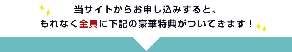 f:id:totoma2:20180426115303p:plain