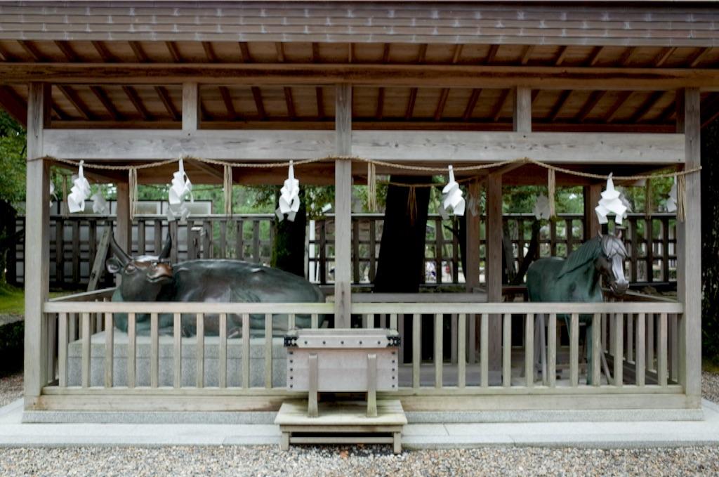 f:id:totorotabi:20170107082353j:image