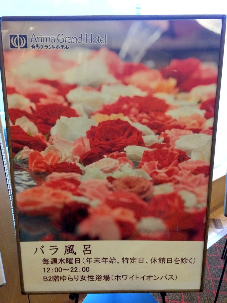 f:id:totorotabi:20170123083213j:image