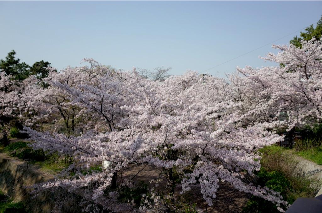 f:id:totorotabi:20170415085302j:image