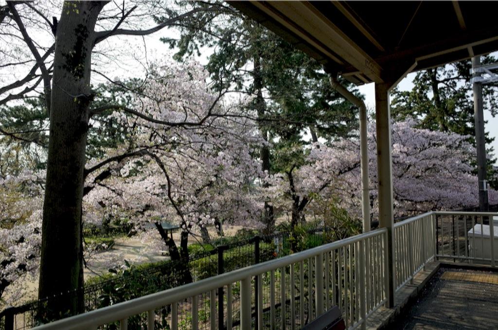f:id:totorotabi:20170415090839j:image
