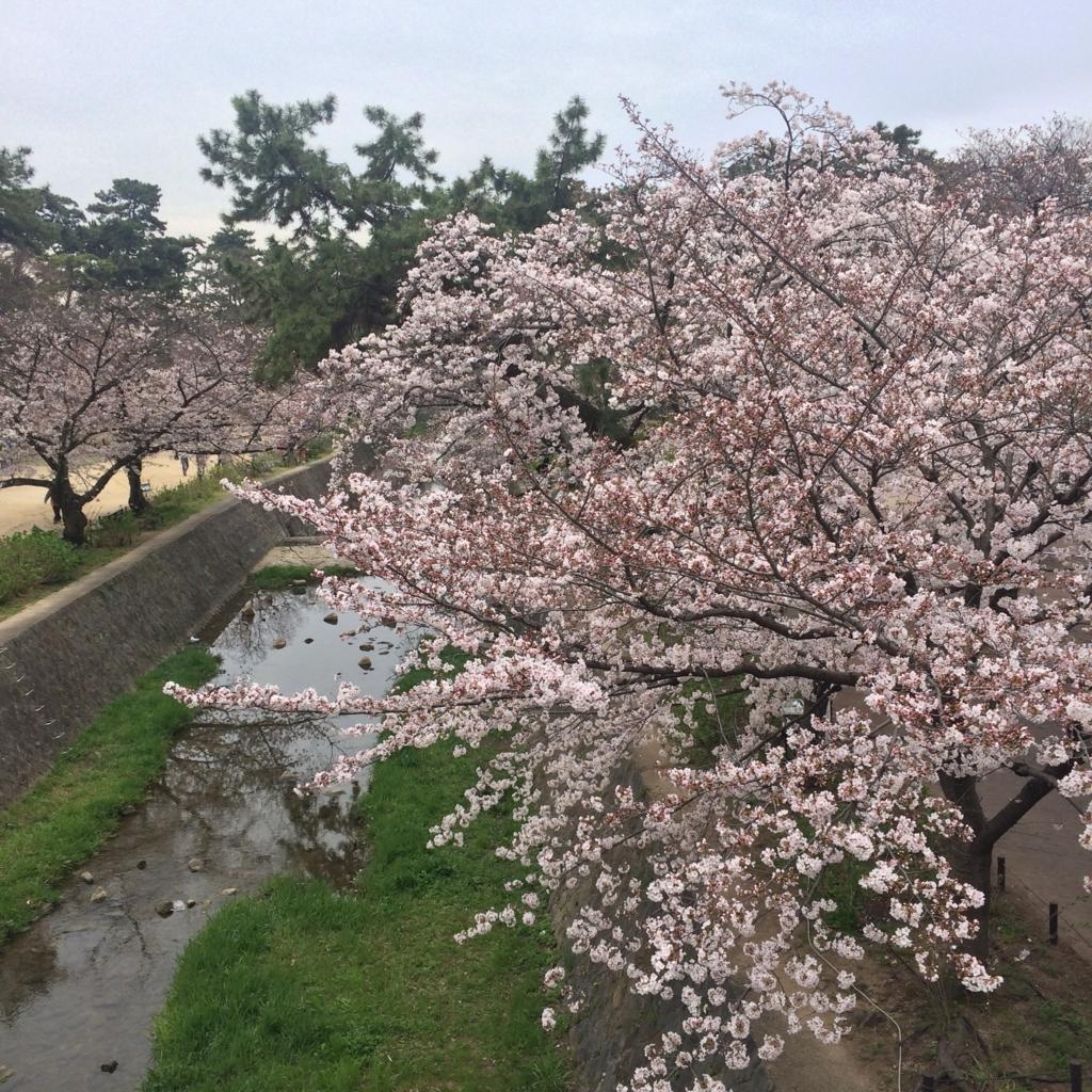 f:id:totorotabi:20170415180659j:plain