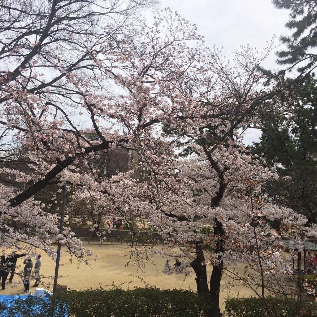 f:id:totorotabi:20170415182317j:plain