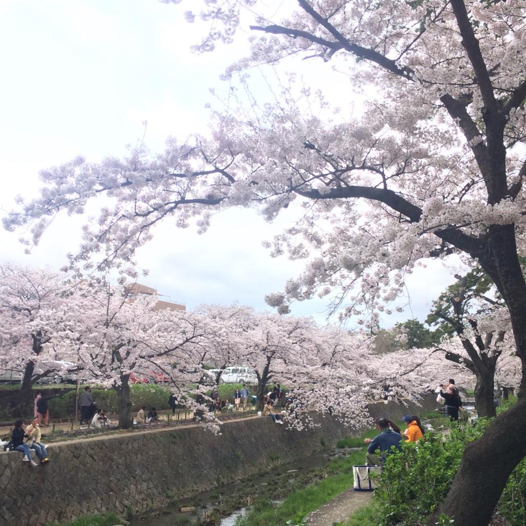 f:id:totorotabi:20170415184012j:plain