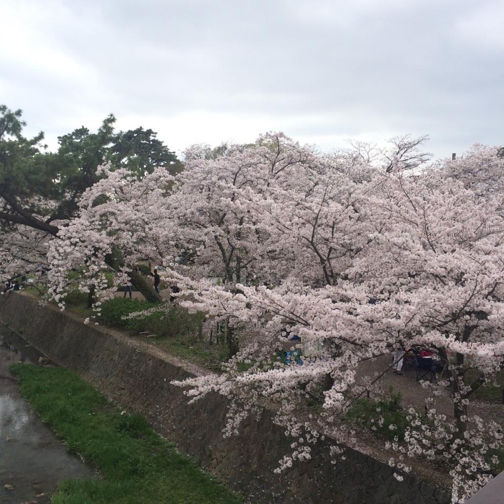 f:id:totorotabi:20170415184126j:plain