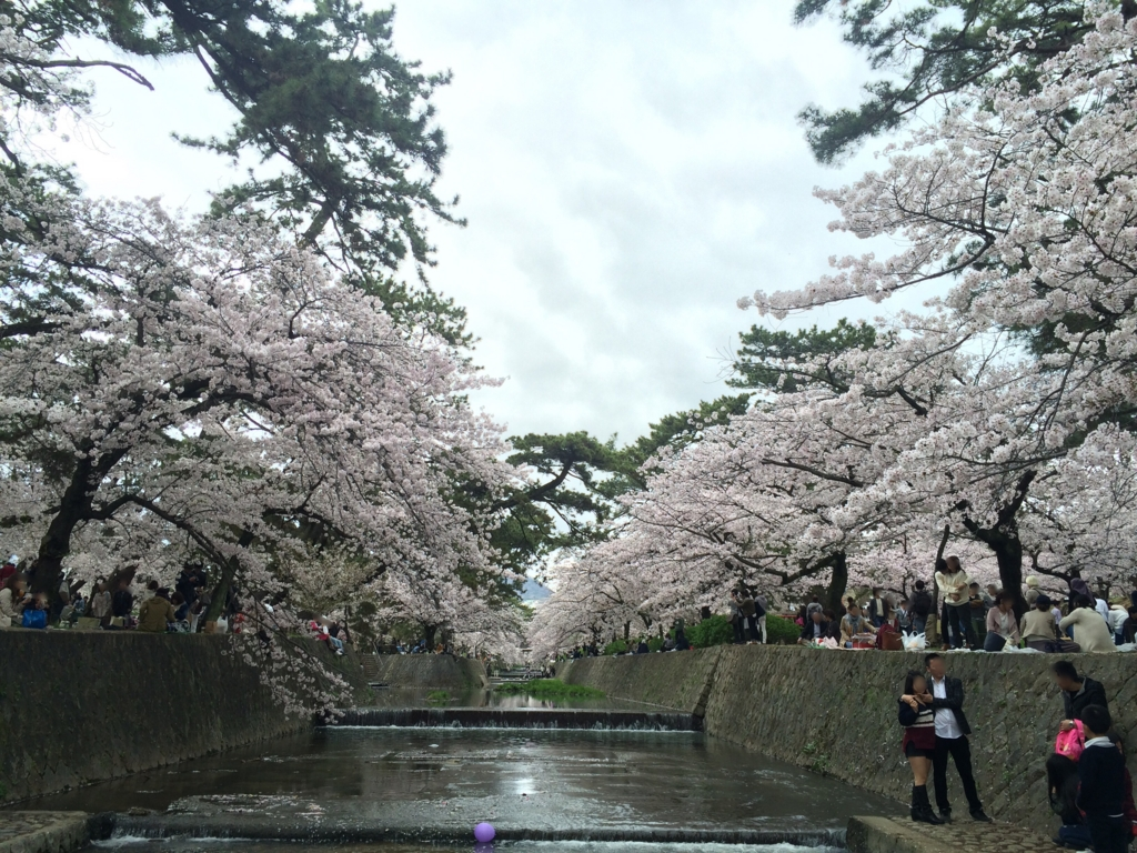 f:id:totorotabi:20170415184417j:plain