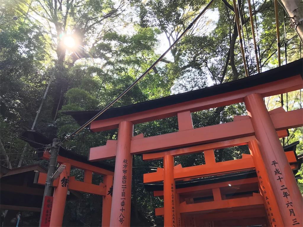 f:id:totorotabi:20180515115707j:image