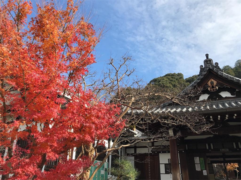 f:id:totorotabi:20181229134805j:image