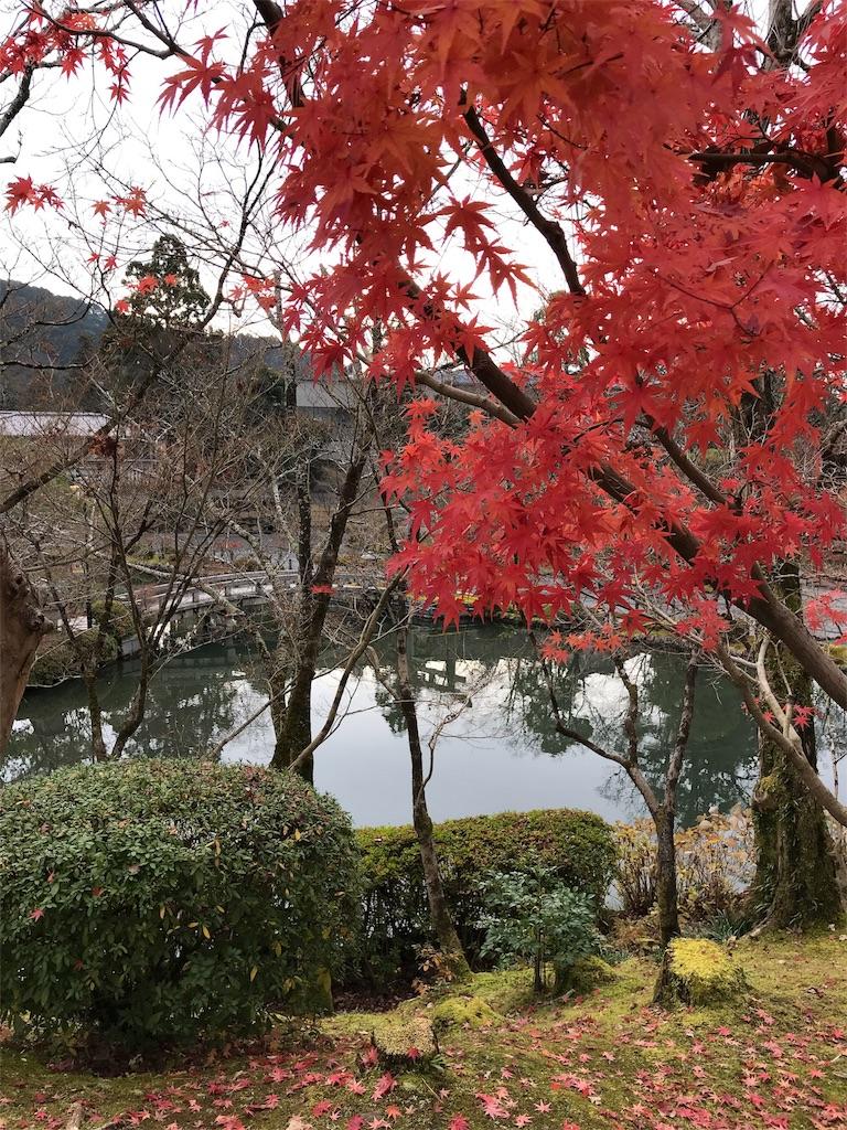 f:id:totorotabi:20181229134827j:image