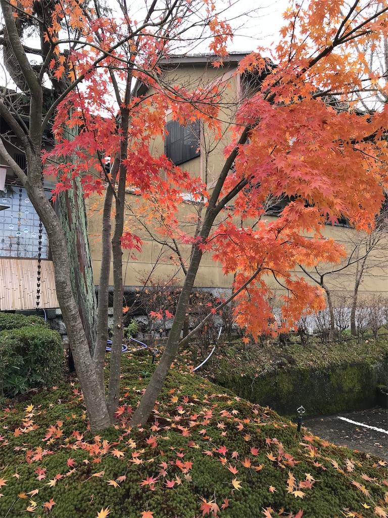 f:id:totorotabi:20181229134910j:image