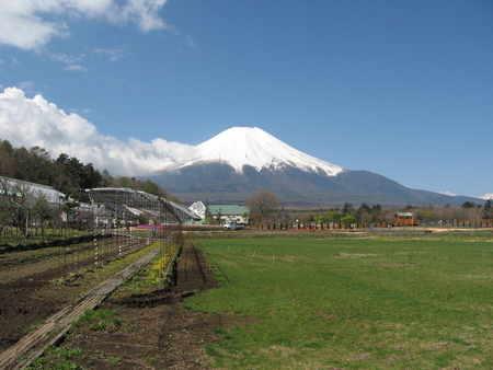 高原の富士