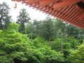 [春][新緑][寺]五重塔のひさしから