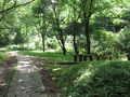 [長沼公園]霧降の道にある休憩所