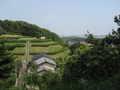 [長沼公園]平山口から南陽台方向