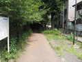[玉川上水緑道]昼食後に玉川上水駅から再出発
