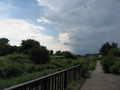 [武蔵野公園][空][雲]雲行きが怪しくなってきた