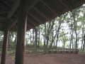 [浅間山公園]東屋で雨宿り