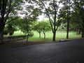 [府中の森公園]雨上がりの公園