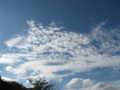 [夏][空][雲][長池公園]八月最後の日
