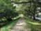 小径・木漏れ日