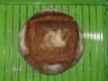 [パン]ライ麦200g小麦全粒200g水260g塩6g