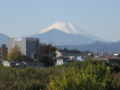 [富士山]11月22日