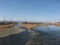 [水辺]浅川多摩川合流地点
