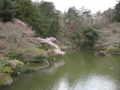[寺][水辺]成田山公園