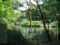 [長池公園][水辺]