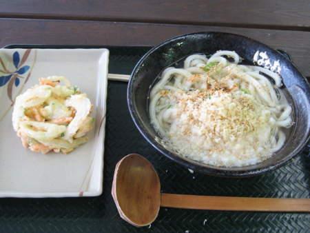 かけ(中)&野菜かき揚げ@はなまるうどん