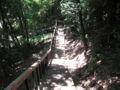 [蓮生寺公園]たんけんの道