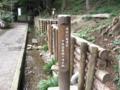 [東京の名湧水]中央図書館下の湧き水