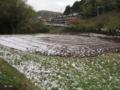 [春]4月の雪