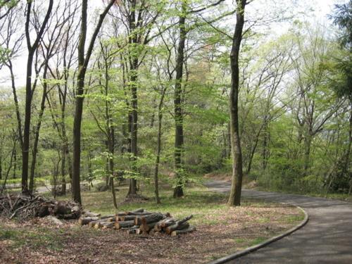 七生丘陵公園