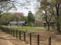[長沼公園][春][新緑]頂上園地