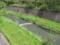 残堀川に水が流れていた……
