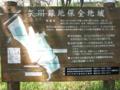 [矢川緑地保全域][新緑][水辺]