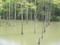 太田切り池