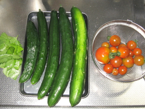 三つ葉、キュウリ、トマト